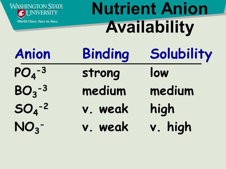 Nitrogen Cycle Organic N NH4+ NO3 - Plant residues, Manure Plants,