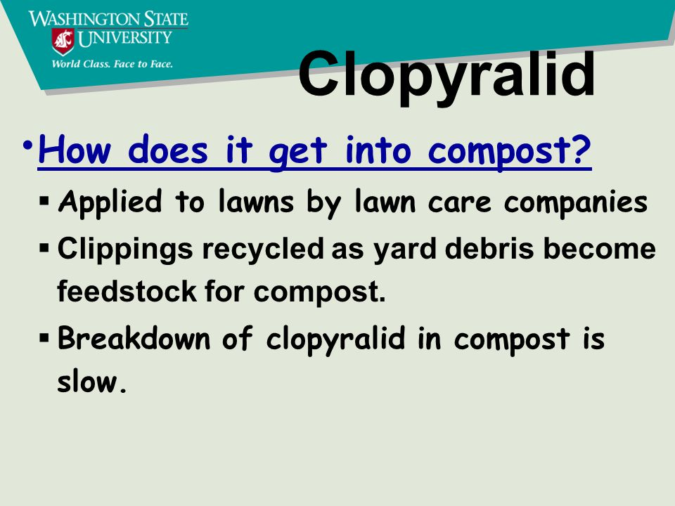 Clopyralid Other sources of contamination