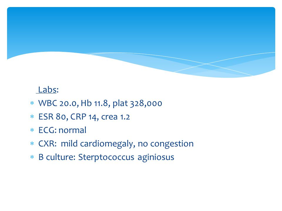 Labs: WBC 20.0, Hb 11.8, plat 328,000. ESR 80, CRP 14, crea 1.2. ECG: normal. CXR: mild cardiomegaly, no congestion.