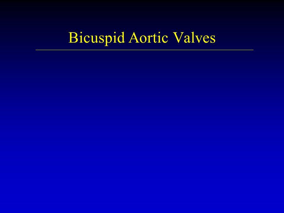 Bicuspid Aortic Valves