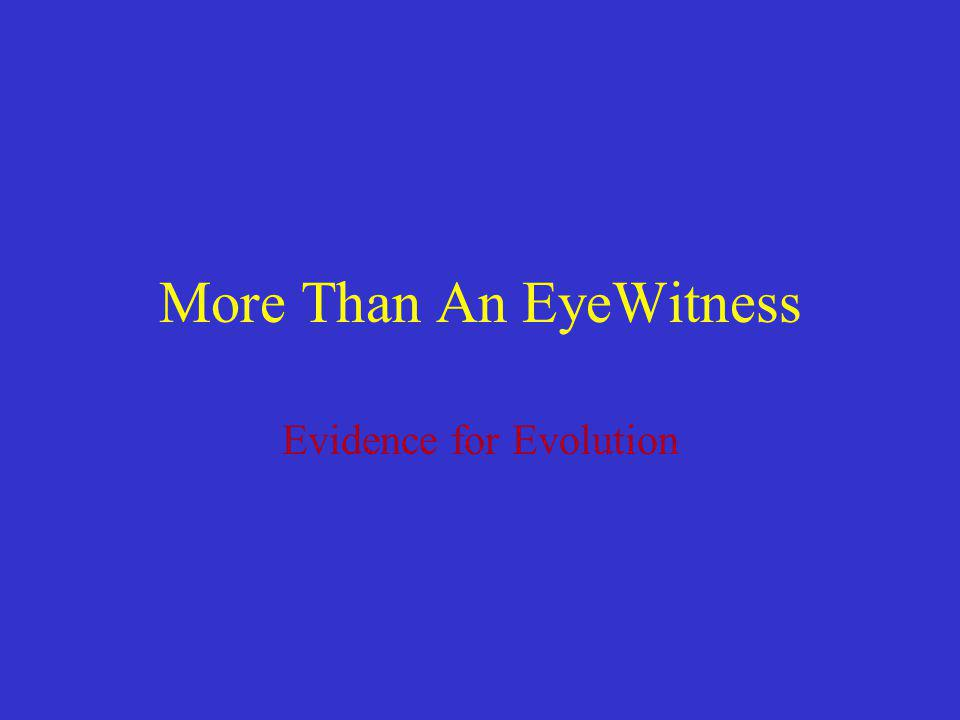 More Than An EyeWitness
