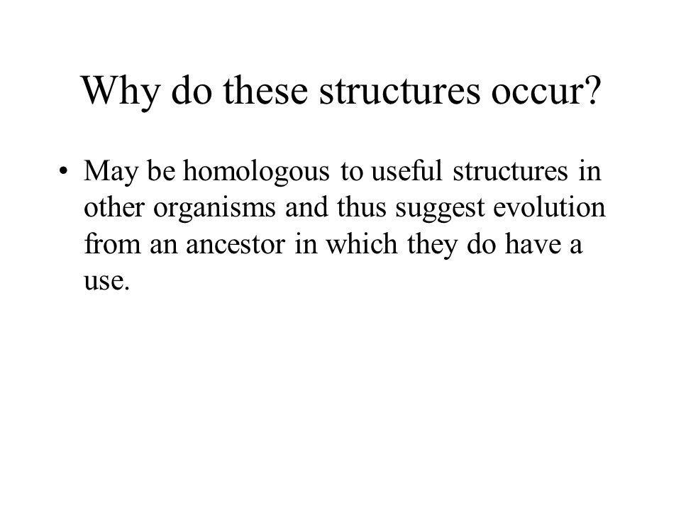 Why do these structures occur