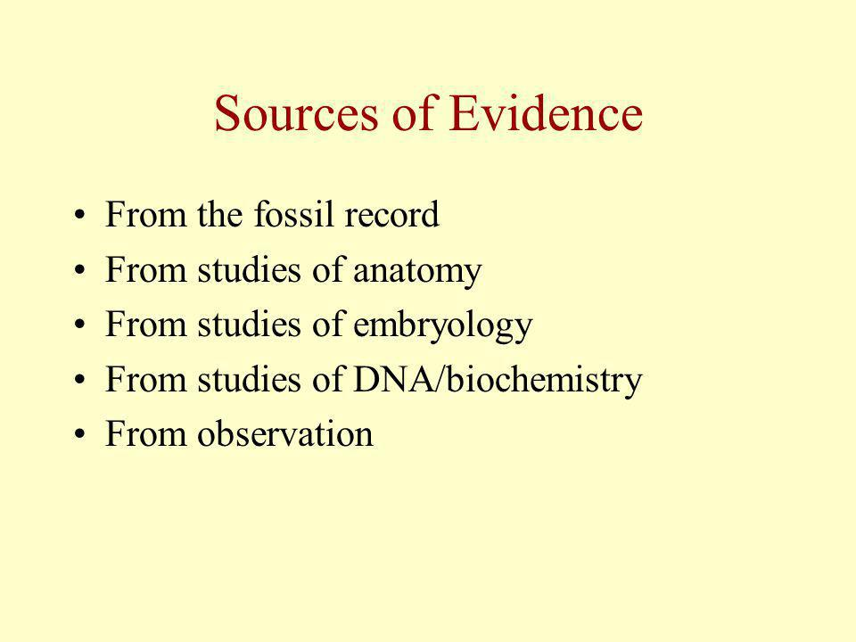 Sources of Evidence From the fossil record From studies of anatomy