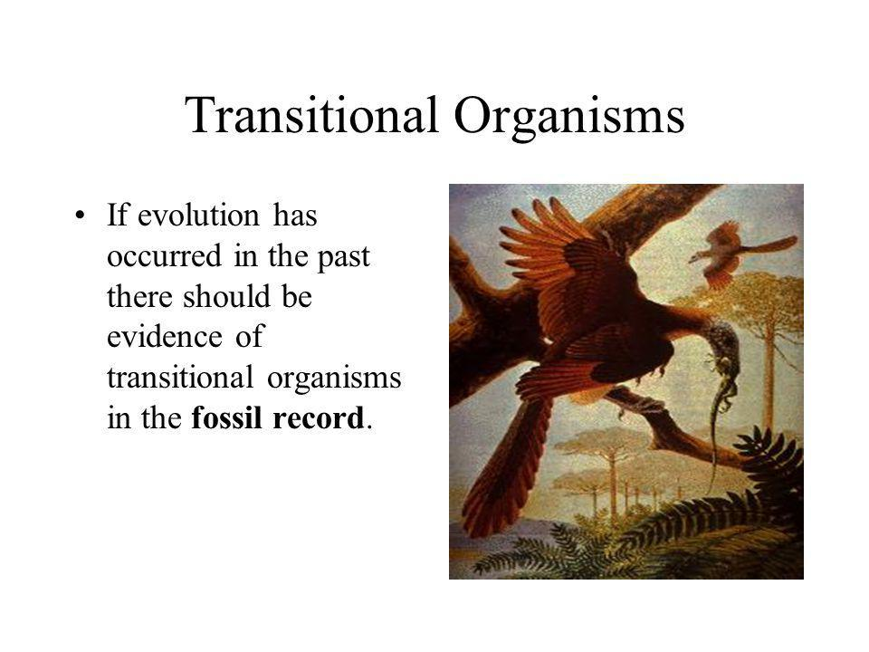 Transitional Organisms