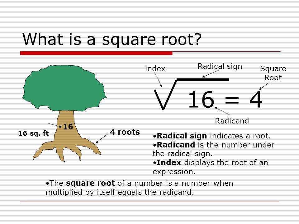 how to find the square root of 16