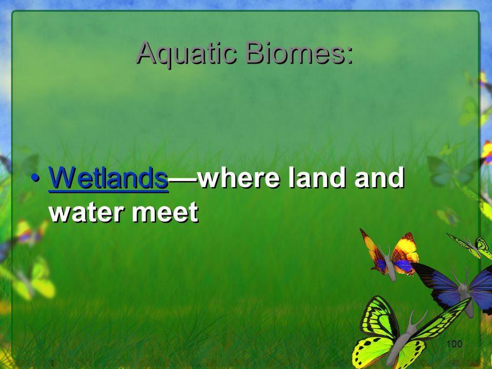 Aquatic Biomes: Wetlands—where land and water meet