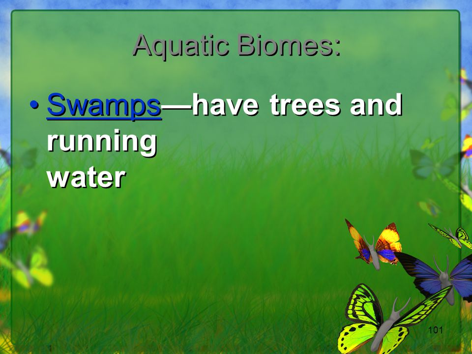 Swamps—have trees and running water