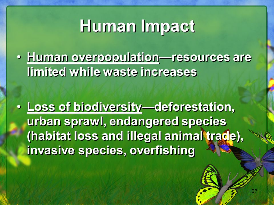 Human Impact Human overpopulation—resources are limited while waste increases.