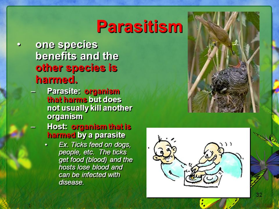 Parasitism one species benefits and the other species is harmed.