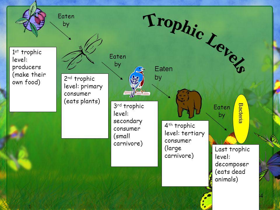 Trophic Levels Eaten by Eaten by