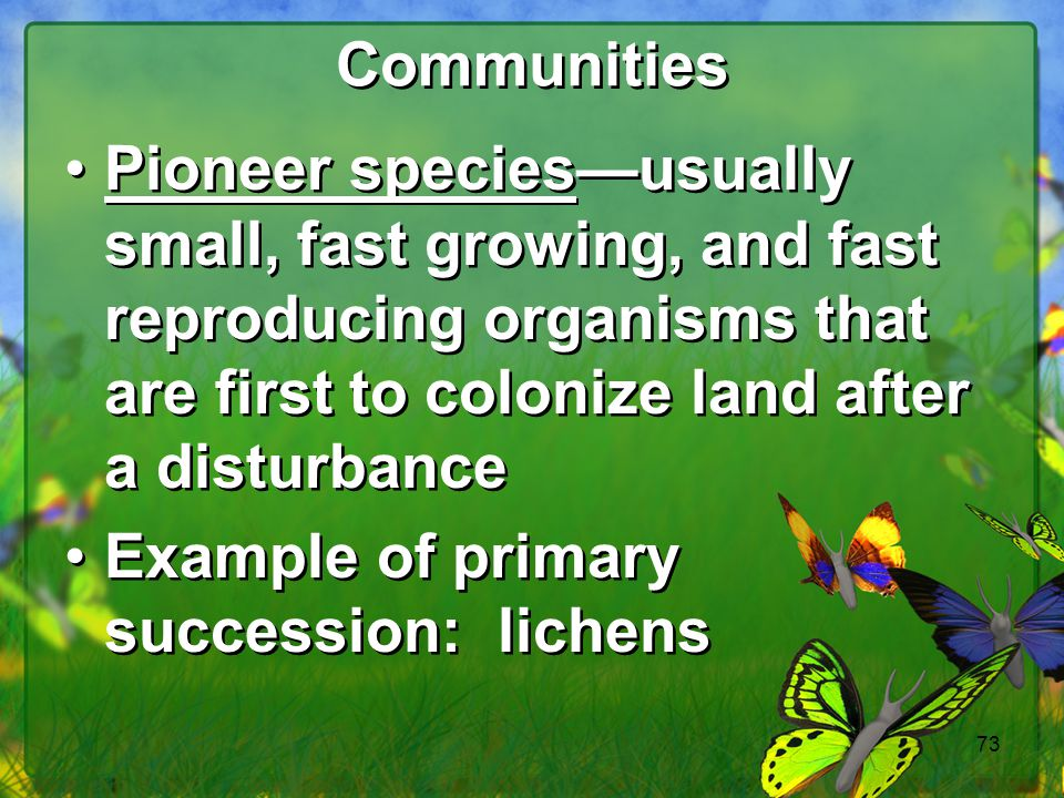 Communities Pioneer species—usually small, fast growing, and fast reproducing organisms that are first to colonize land after a disturbance.