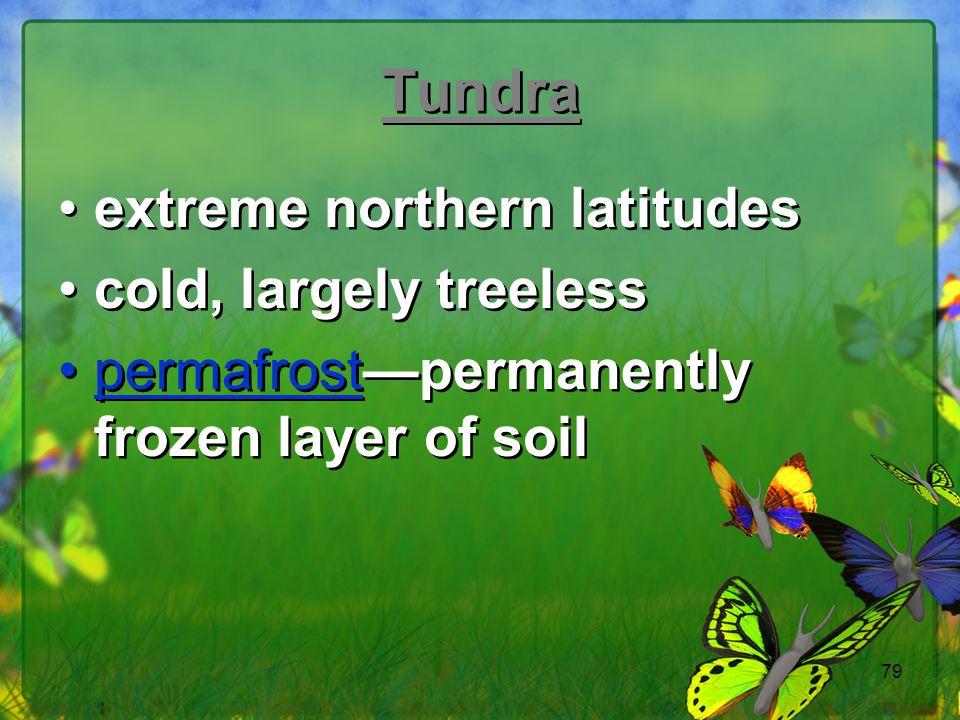 Tundra extreme northern latitudes cold, largely treeless