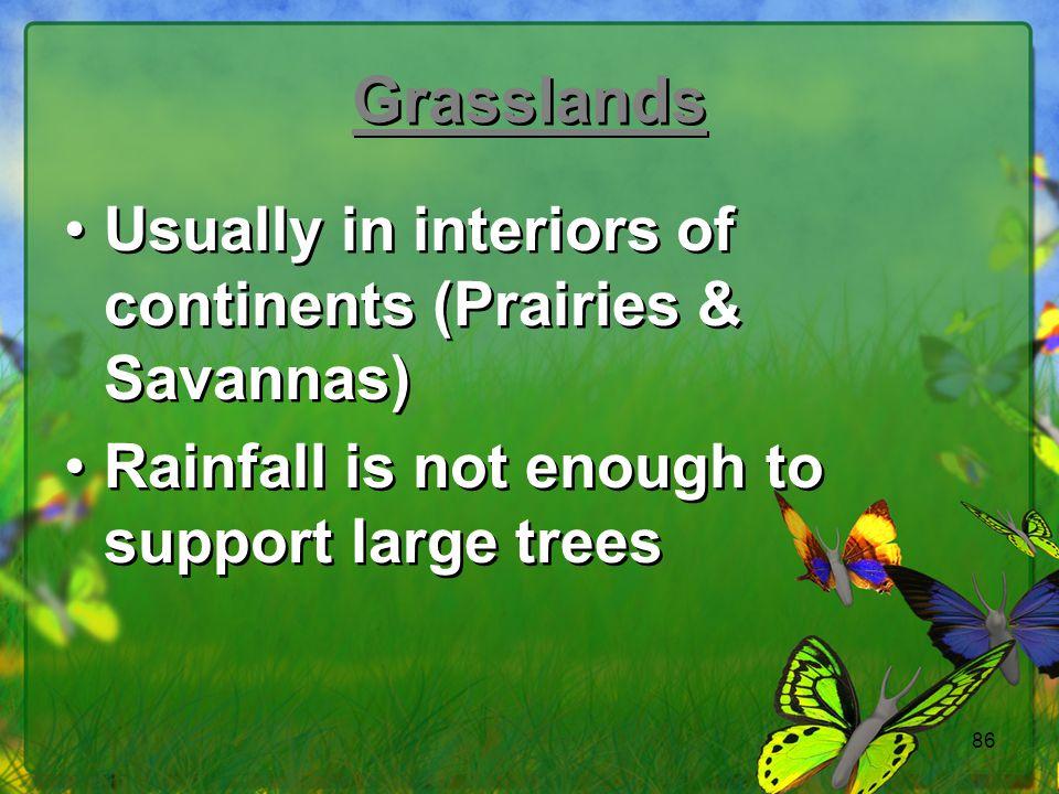 Grasslands Usually in interiors of continents (Prairies & Savannas)