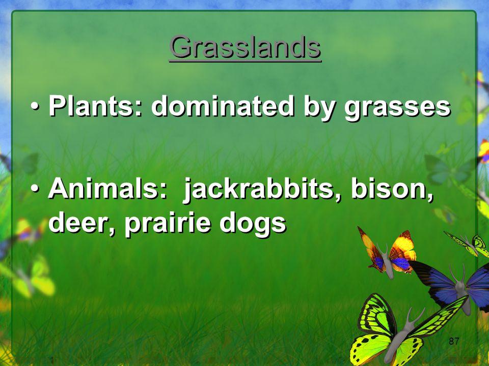 Grasslands Plants: dominated by grasses