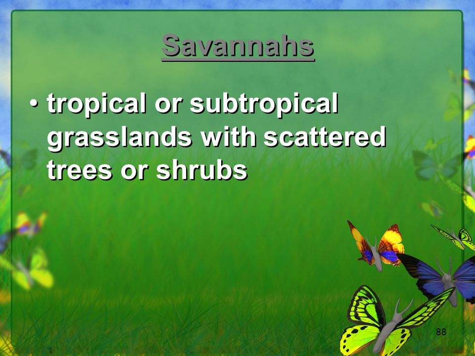 Savannahs tropical or subtropical grasslands with scattered trees or shrubs