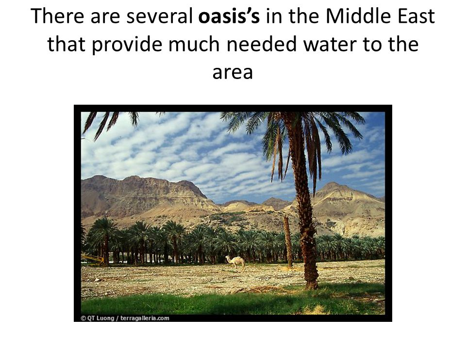 There are several oasis's in the Middle East that provide much needed water to the area