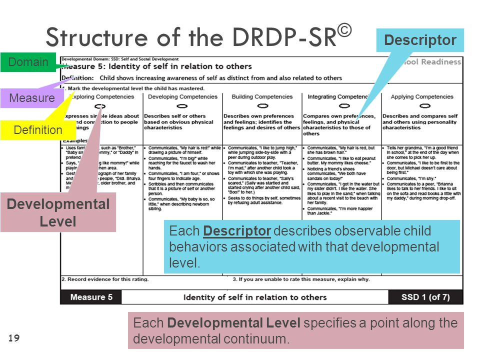 Structure of the DRDP-SR©