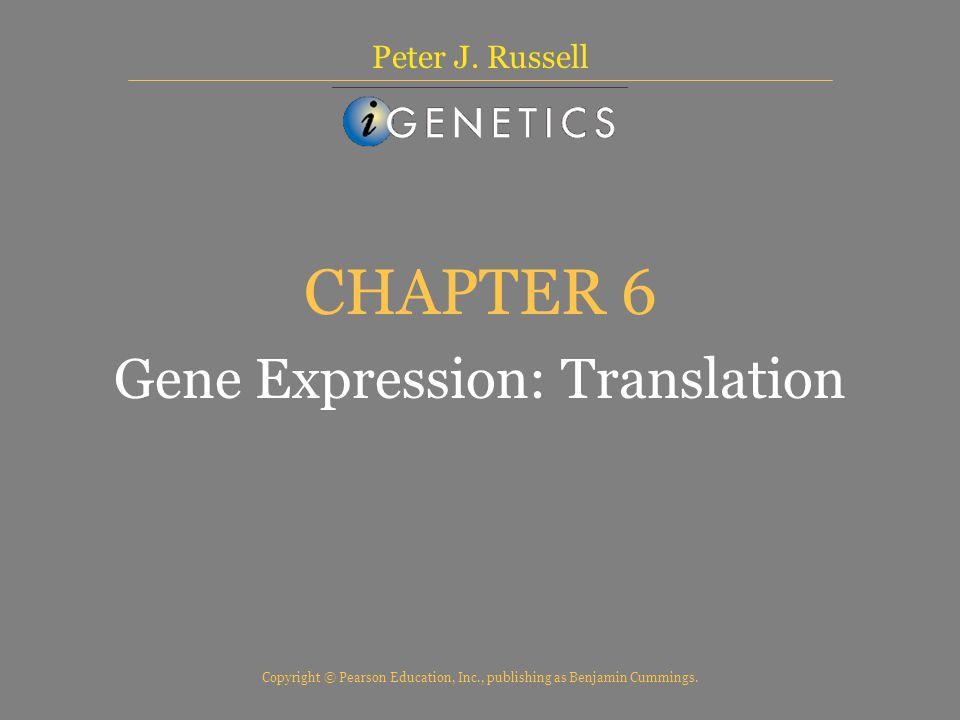 CHAPTER 6 Gene Expression: Translation