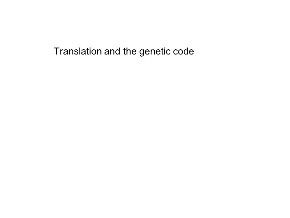 Translation and the genetic code