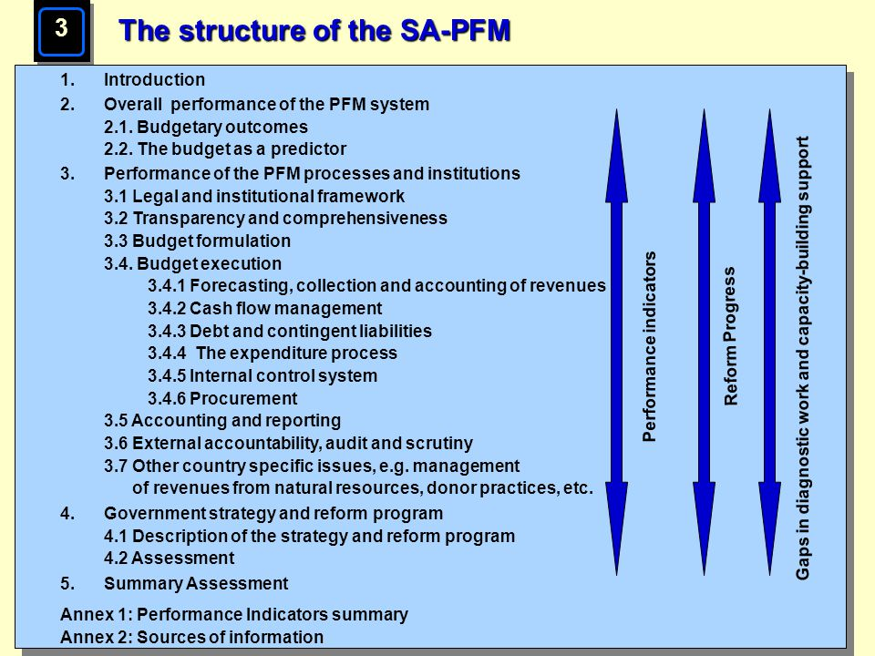 The structure of the SA-PFM
