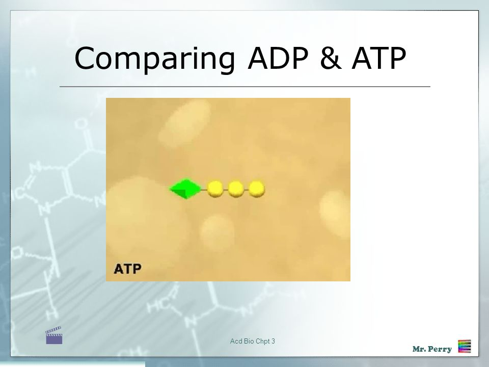 Comparing ADP & ATP  Acd Bio Chpt 3