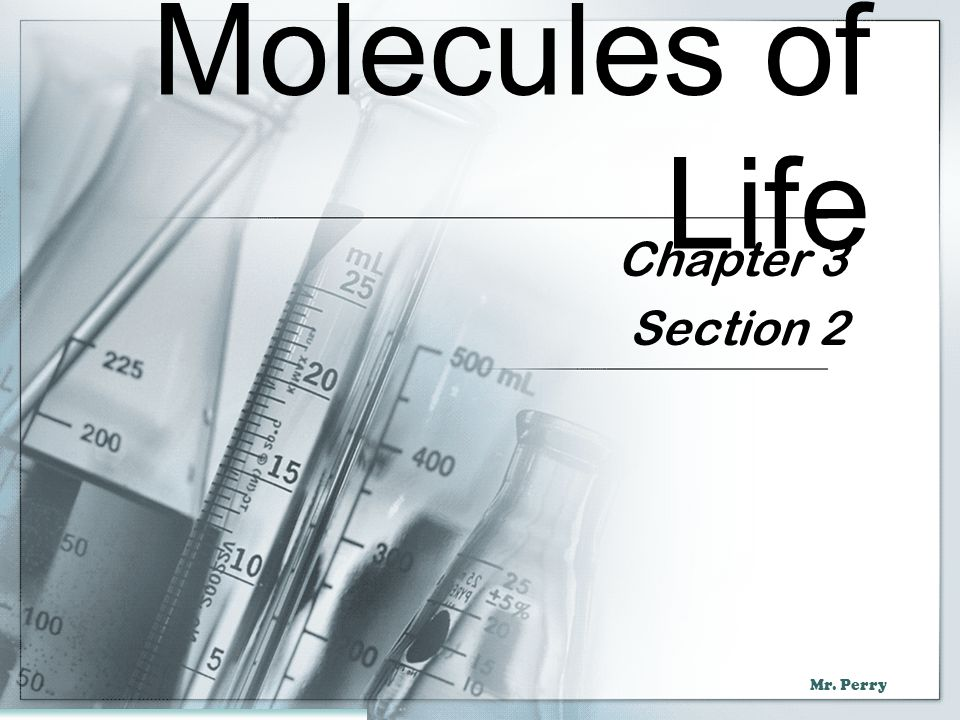 Molecules of Life Chapter 3 Section 2
