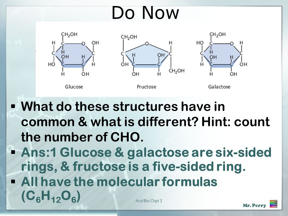 Do Now What do these structures have in common & what is different Hint: count the number of CHO.