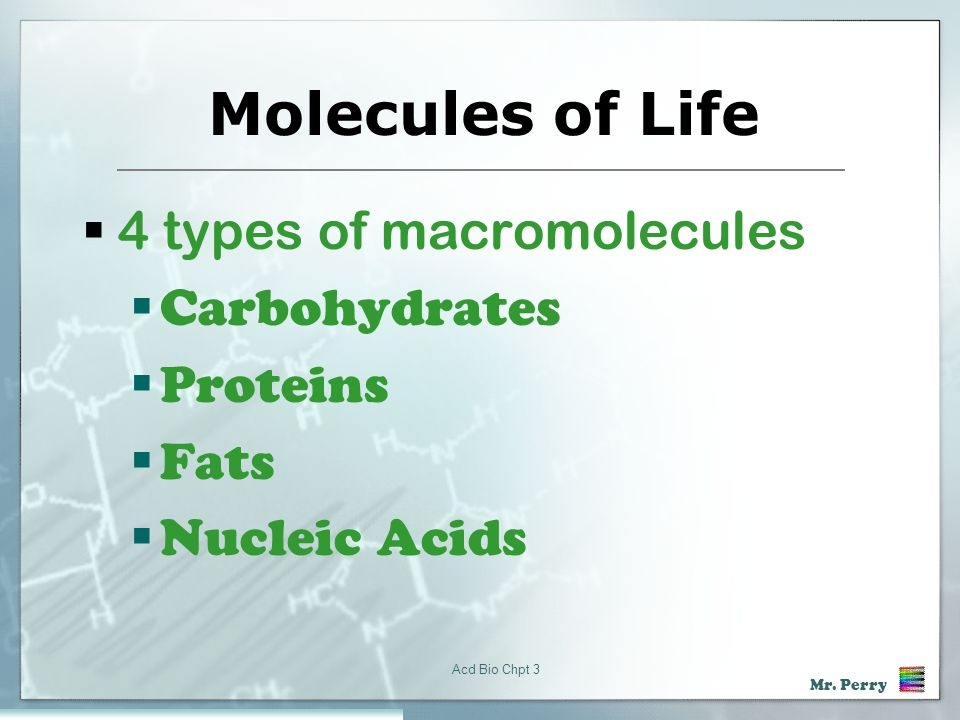 Molecules of Life 4 types of macromolecules Carbohydrates Proteins