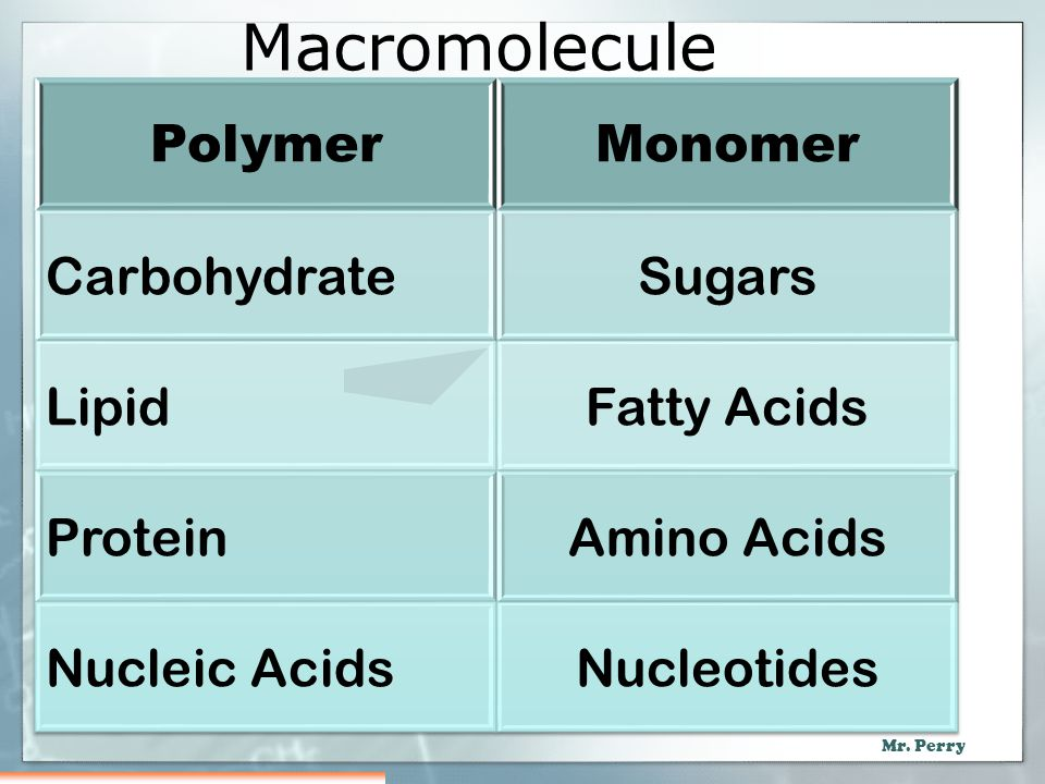 Macromolecule Polymer Monomer Carbohydrate Sugars Lipid Fatty Acids