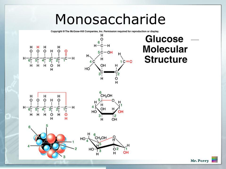 Monosaccharide Acd Bio Chpt 3