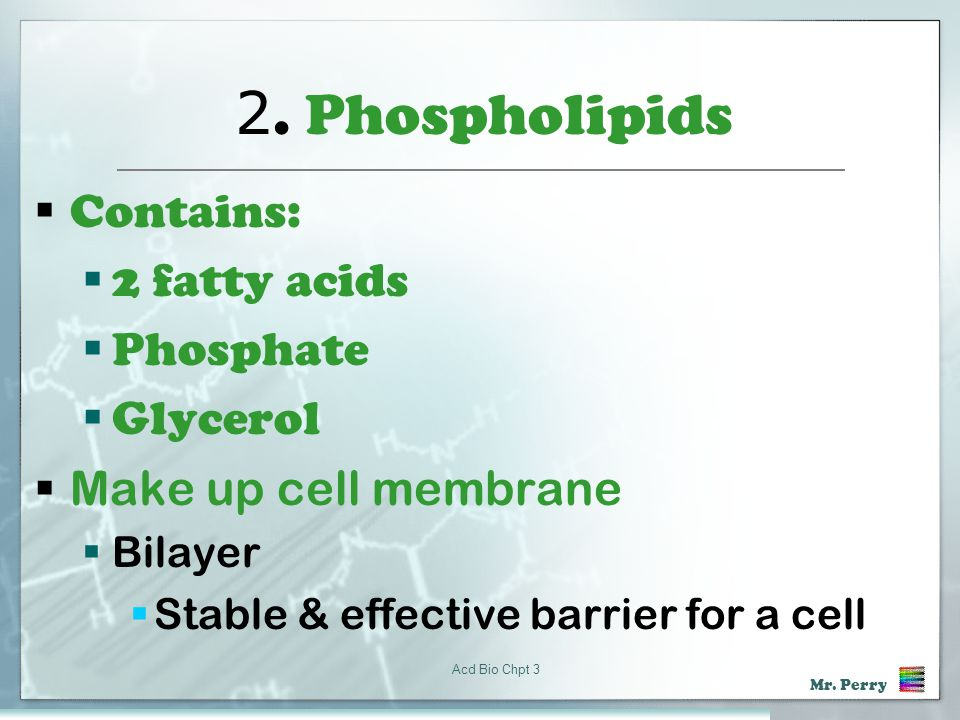 2. Phospholipids Contains: 2 fatty acids Phosphate Glycerol