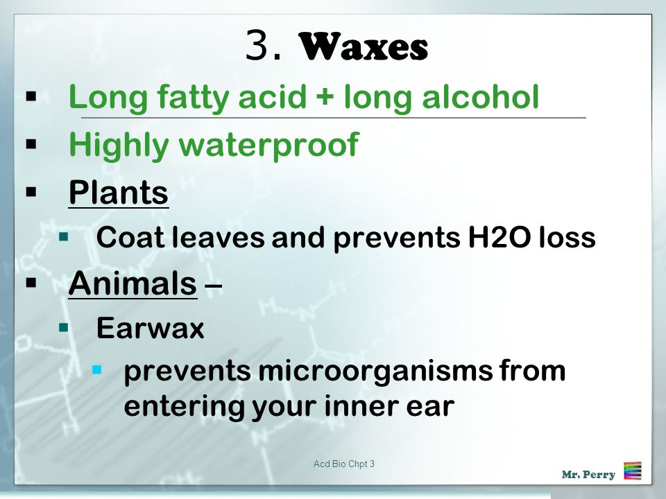 3. Waxes Long fatty acid + long alcohol Highly waterproof Plants