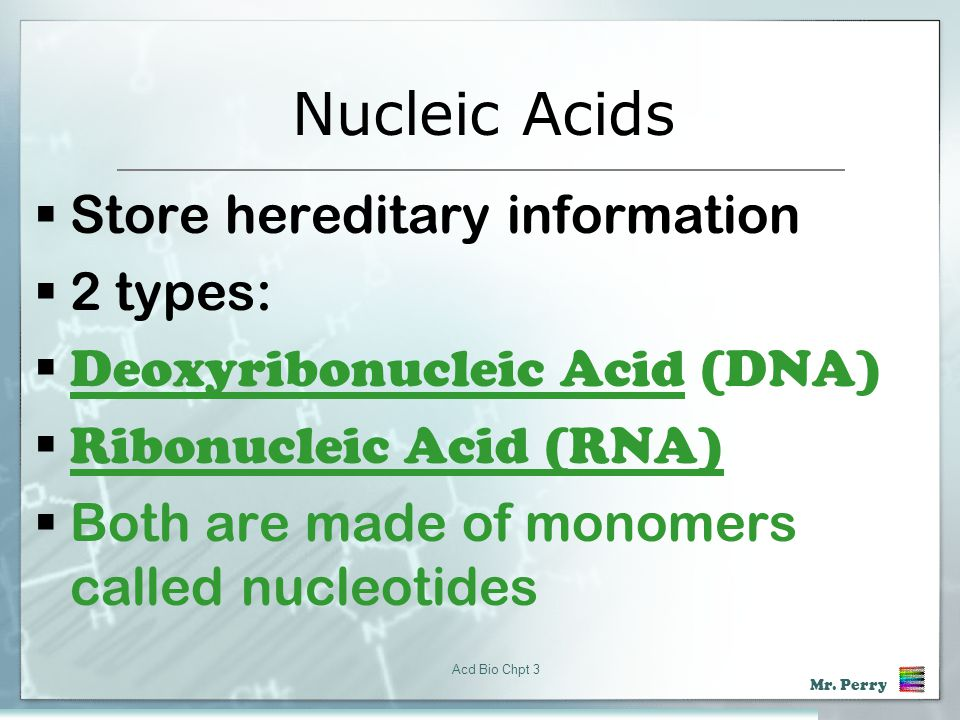 Nucleic Acids Store hereditary information 2 types: