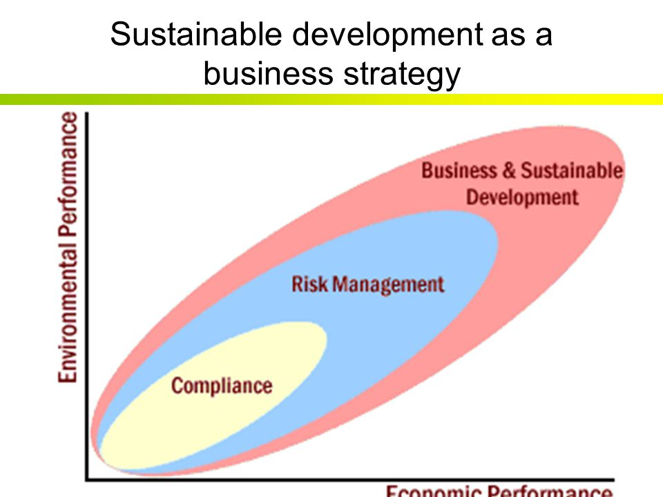 Sustainable development as a business strategy
