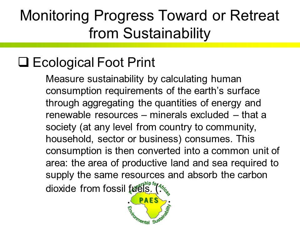 Monitoring Progress Toward or Retreat from Sustainability