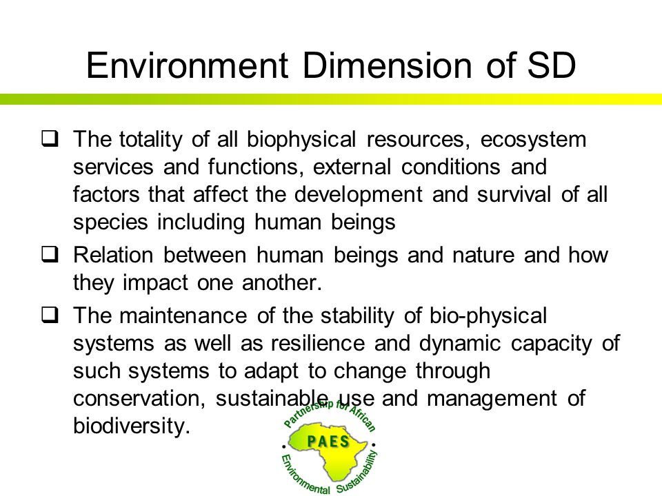 Environment Dimension of SD