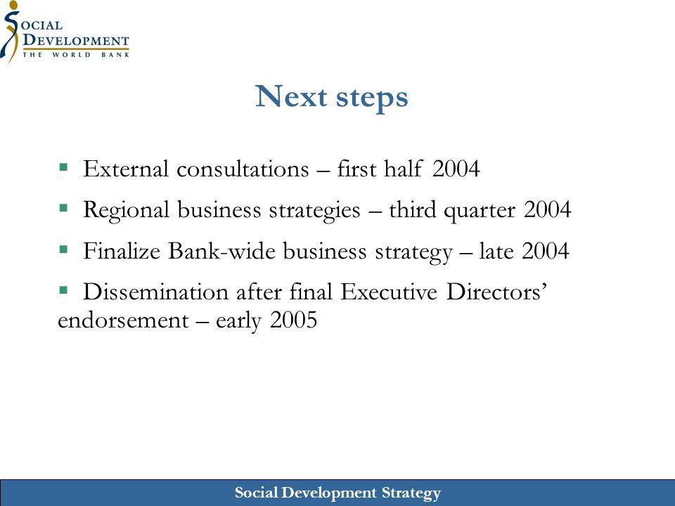 Next steps External consultations – first half 2004