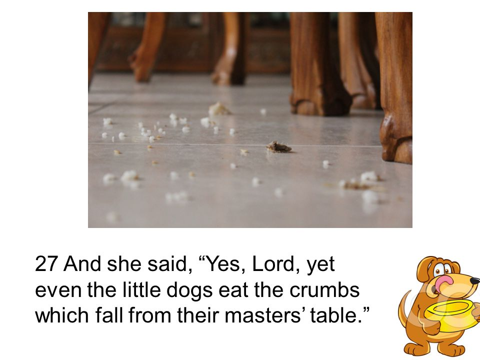 27 And she said, Yes, Lord, yet even the little dogs eat the crumbs which fall from their masters' table.