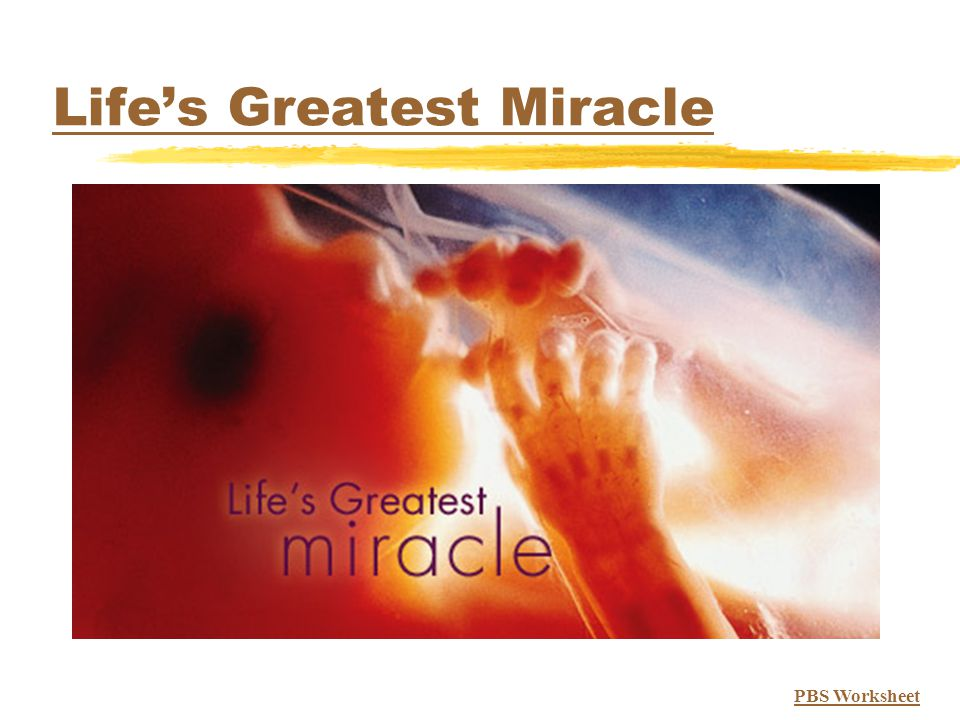 Life's Greatest Miracle