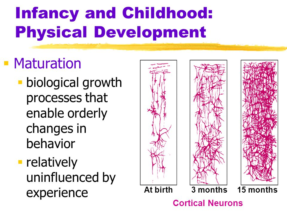 Infancy and Childhood: Physical Development