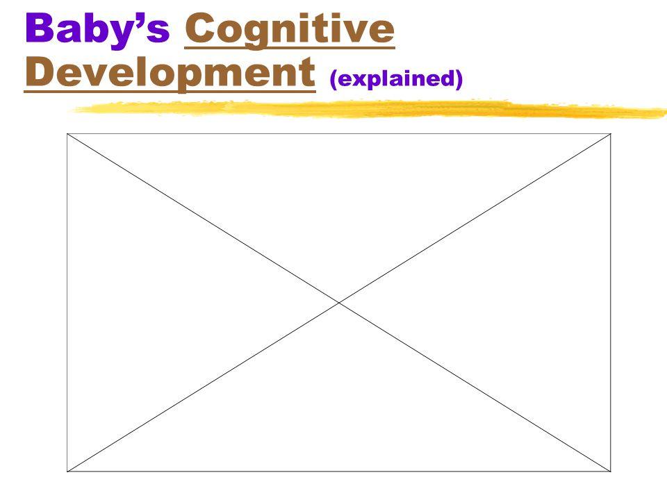 Baby's Cognitive Development (explained)