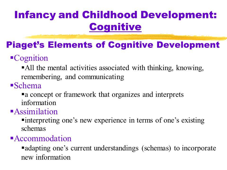 Piaget's Elements of Cognitive Development