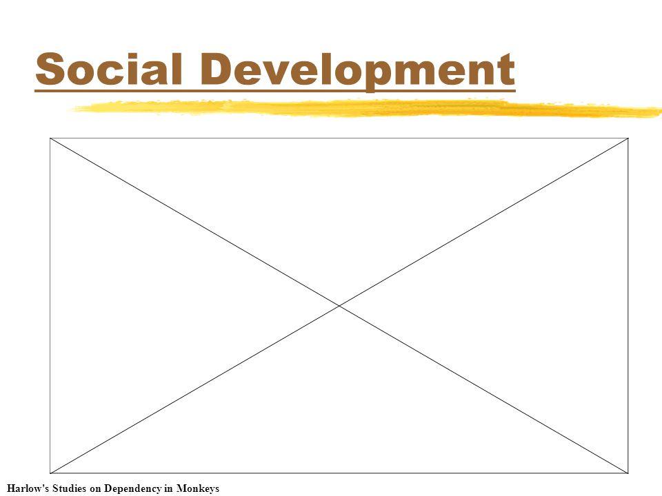 Social Development Harlow s Studies on Dependency in Monkeys