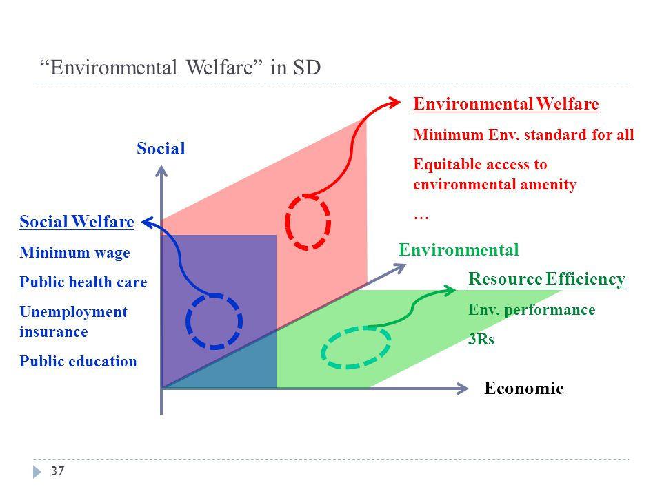 Environmental Welfare in SD