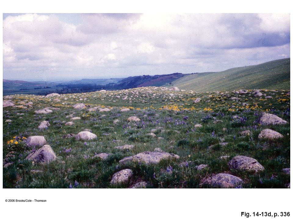 Figure 14.13: (d) Ground moraine in Montana.