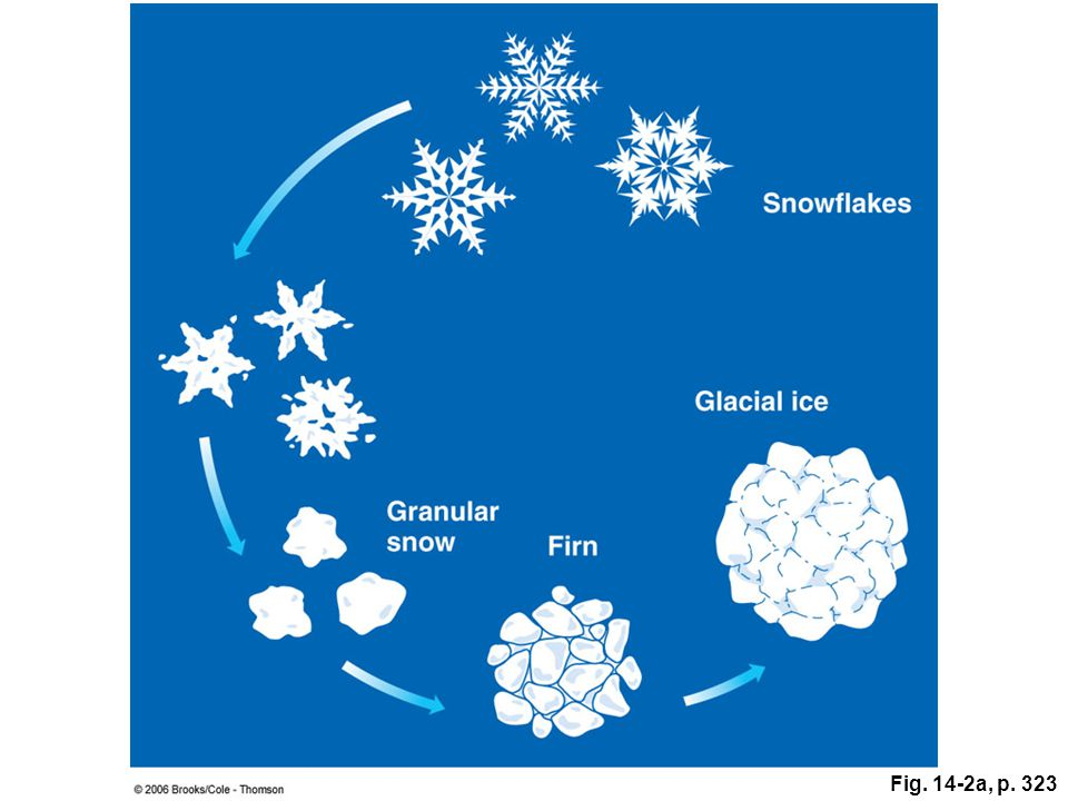 Figure 14.2a: The conversion of freshly fallen snow to firn and glacial ice.