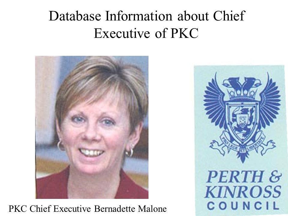 Database Information about Chief Executive of PKC