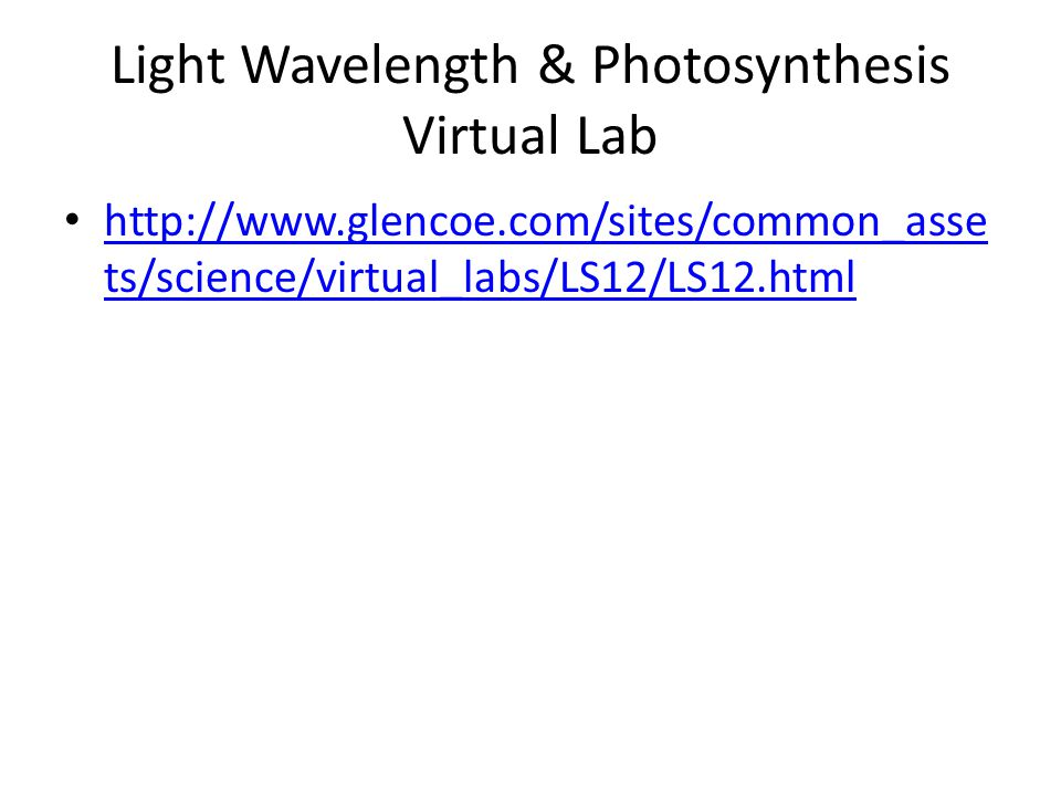 Light Wavelength & Photosynthesis Virtual Lab