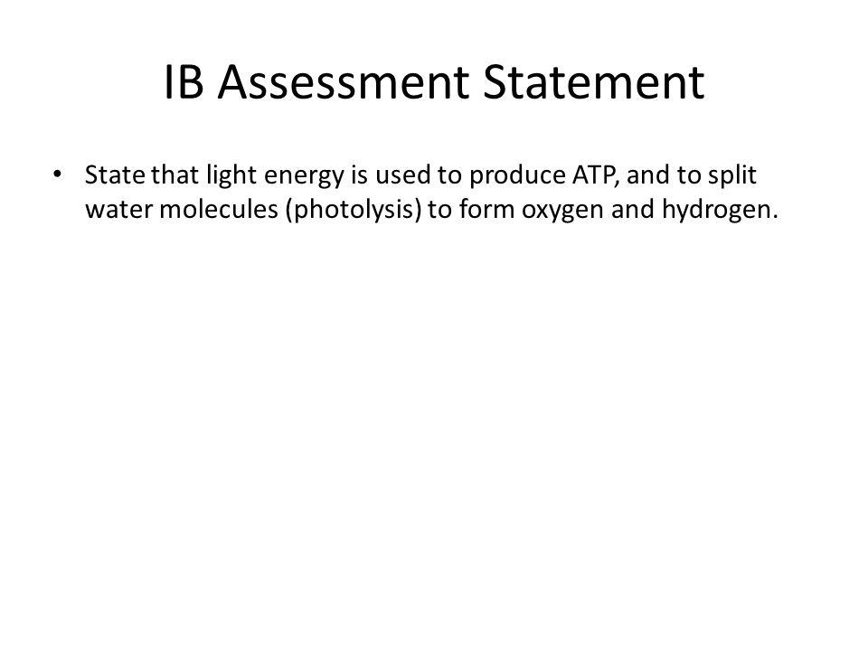 IB Assessment Statement