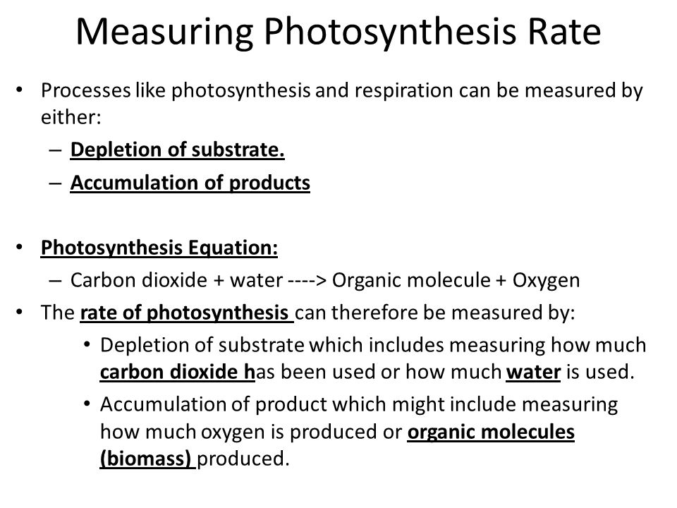 Measuring Photosynthesis Rate